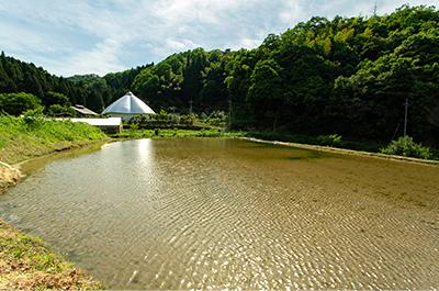 農地の保水力はダムの役割で町を守っている