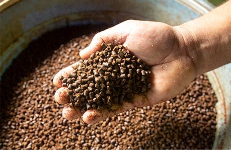 豆っこ肥料を使った「土づくり」