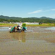 与謝野町 農業の概要