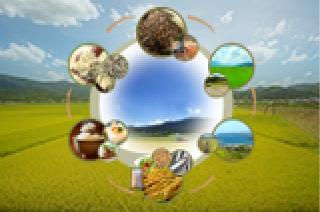 自然循環農業の町与謝野町