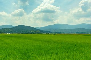 与謝野の自然環境