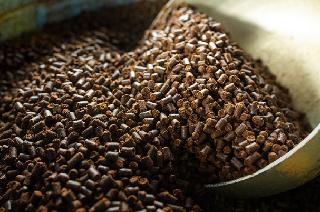 有機質京の豆っこ肥料