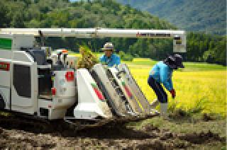 与謝野の農業の現状