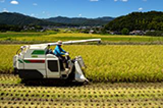 農業を志す方へ新規就農相談