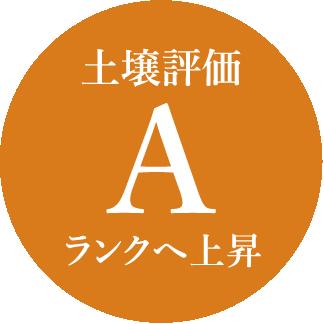 土壌評価 A