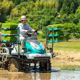 自然循環農業