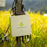 ICT農業